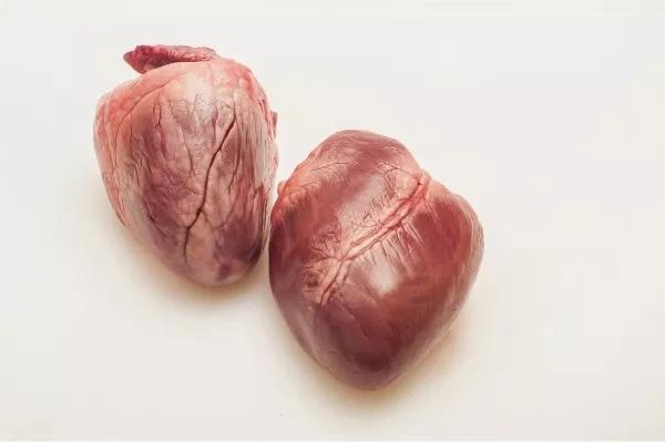 医生说:猪的内脏可以放心吃,肥肠、腰花、肚子、猪肝……(下篇)